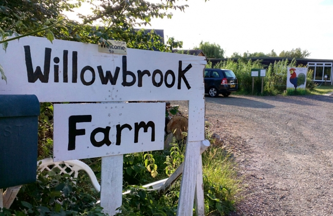 Willowbrook Festival 2019